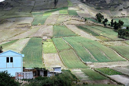 Hohe Erwartungen verschuldeter Kleinbauern an neues Landgesetz