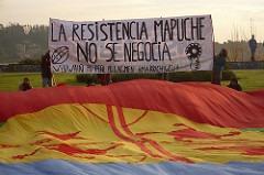 Seit Jahrzehnten kämpfen die Mapuche um ihr Land. Foto: Flickr/Carol Crisosto Cadiz (CC BY-SA 2.0)