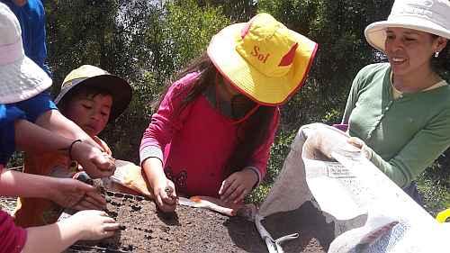 ondabeitrag-gemeinschaftsgarten Lak´a Uta (La Paz) foto: bettina hoyer